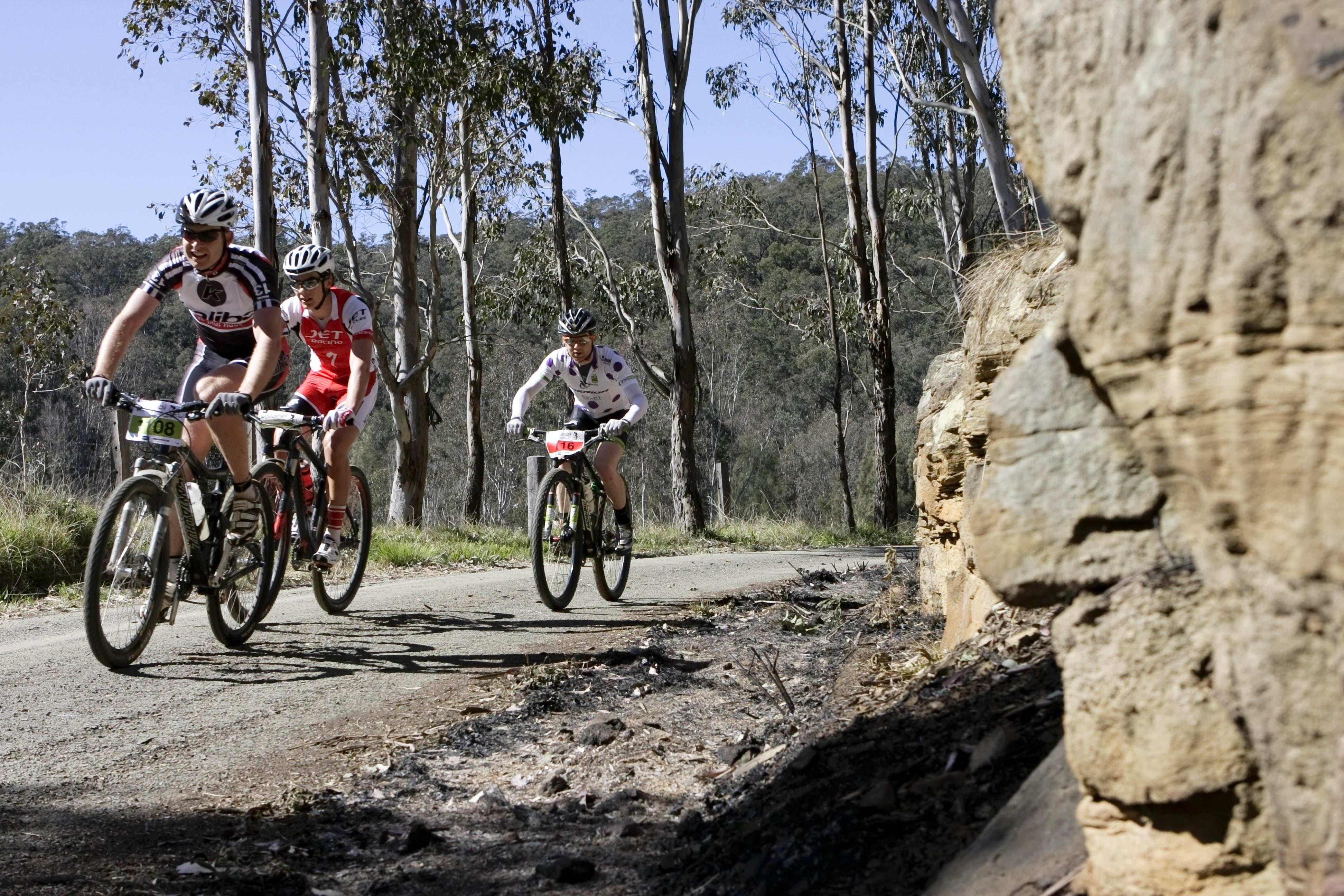Wollombi Wild Ride Mountain Bike Ride - Accommodation BNB