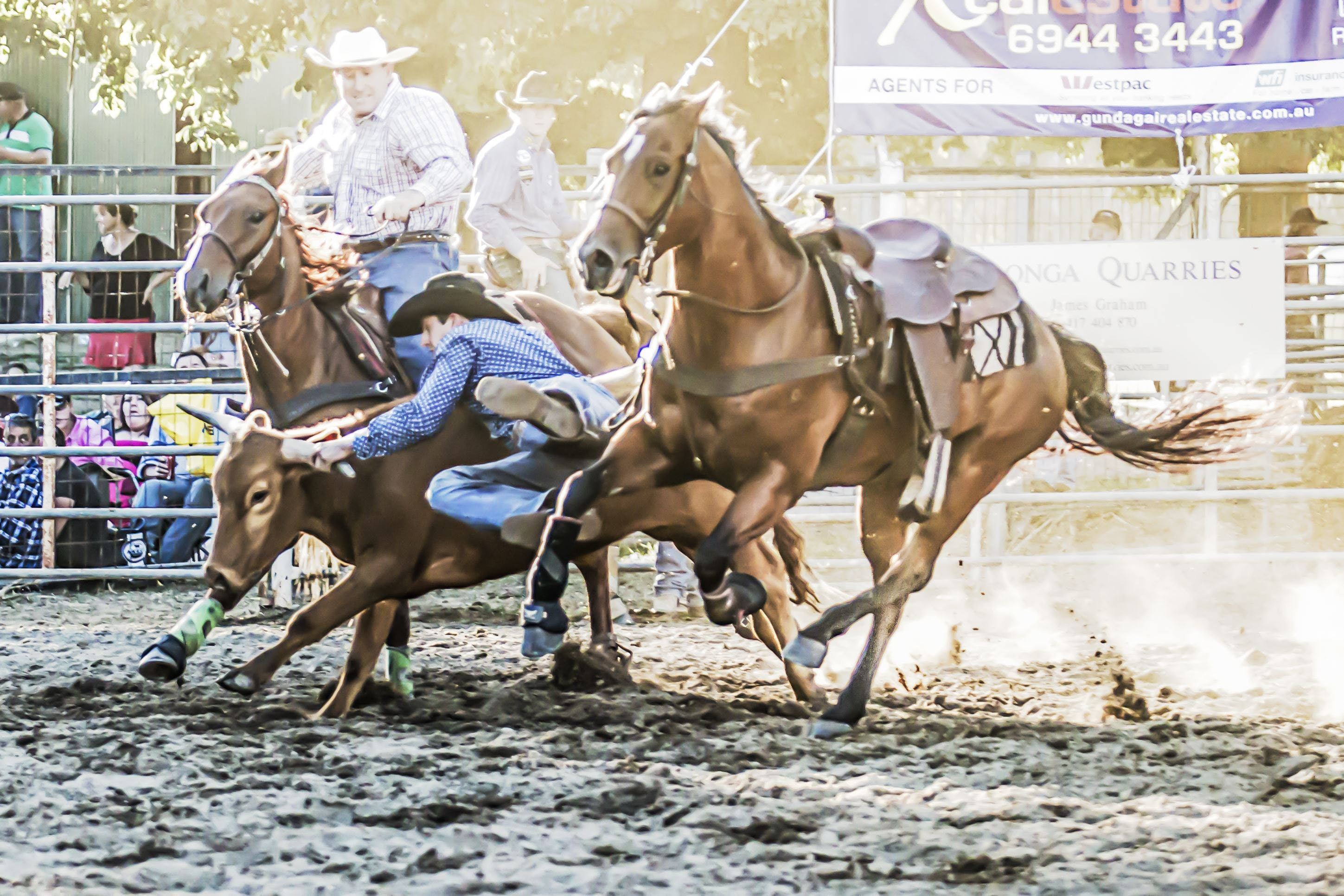 Gundagai Rodeo - Accommodation BNB