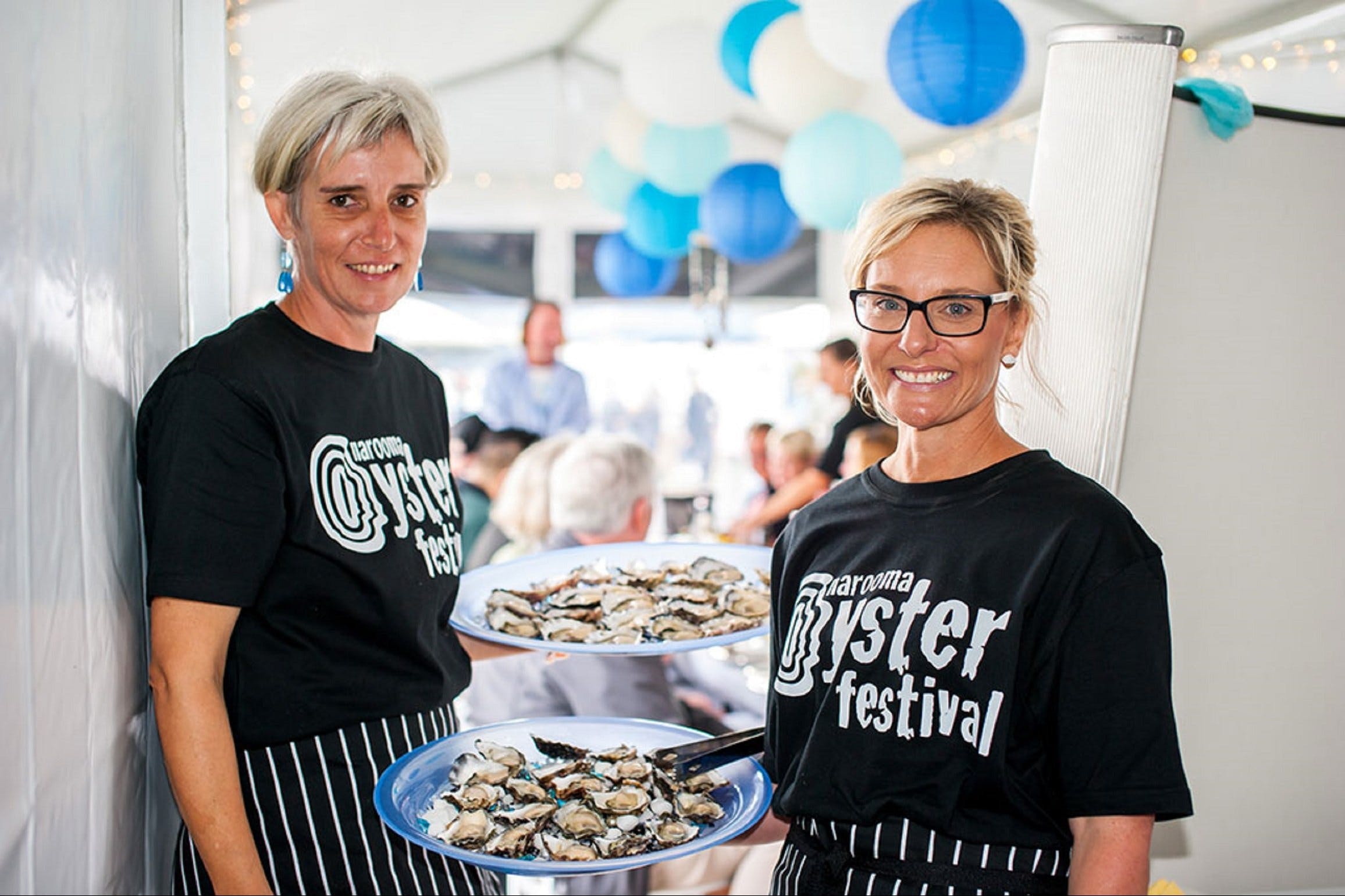 Narooma Oyster Festival - Accommodation BNB