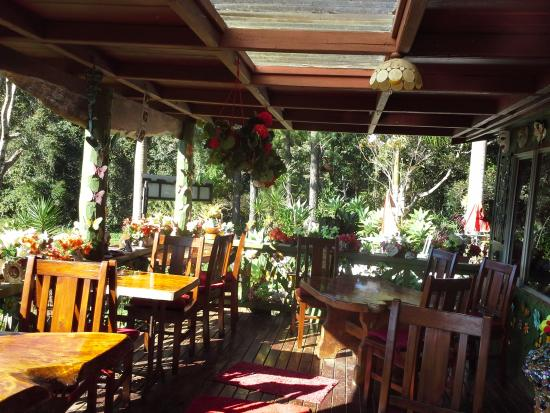 Suzannes's Hideaway Cafe - Accommodation BNB