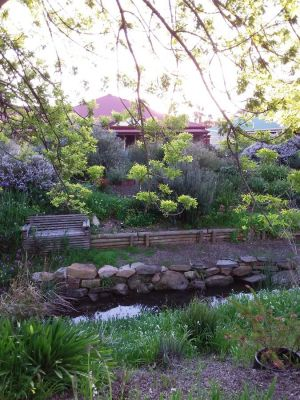 Frog Song at Willunga - Accommodation BNB