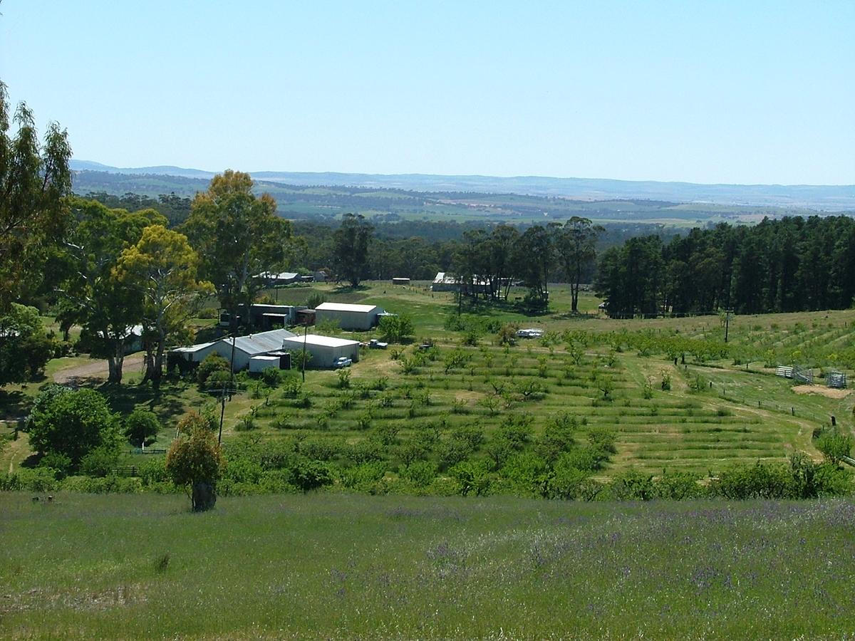 Taralee Orchards - Accommodation BNB