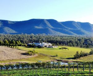 Grapevines Boutique Accommodation - Accommodation BNB