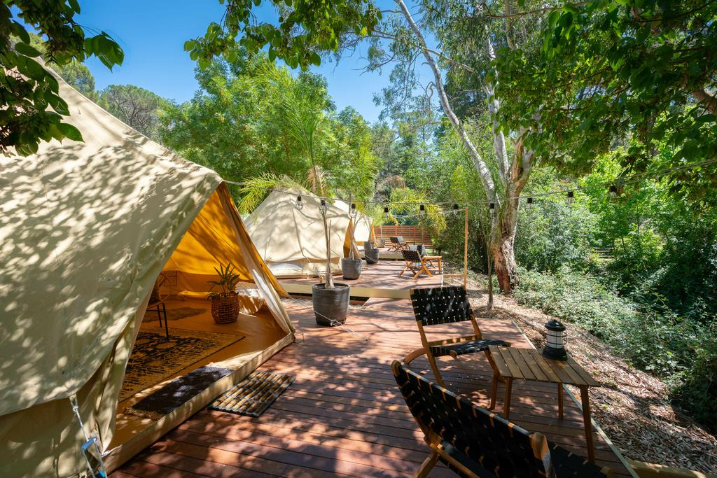 Castlemaine Gardens Luxury Glamping - Accommodation BNB