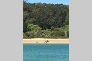 FAIRVIEW COTTAGE 25B - Waterfront accommodation - Accommodation BNB