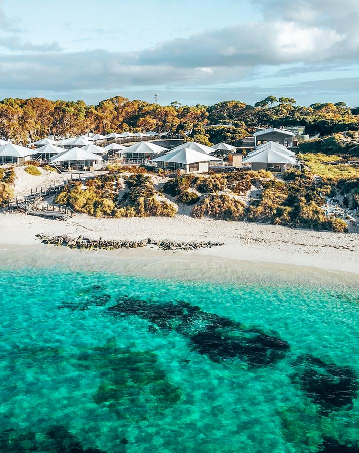 Discovery Rottnest Island - Accommodation BNB