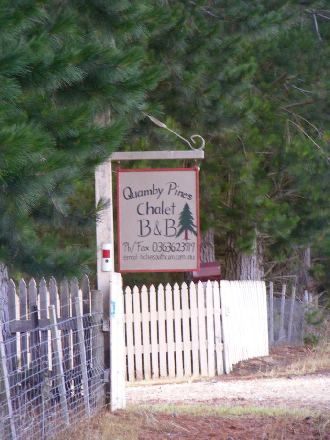 Quamby Pines Chalet - Accommodation BNB
