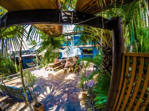 Cool Bananas Backpackers - Accommodation BNB